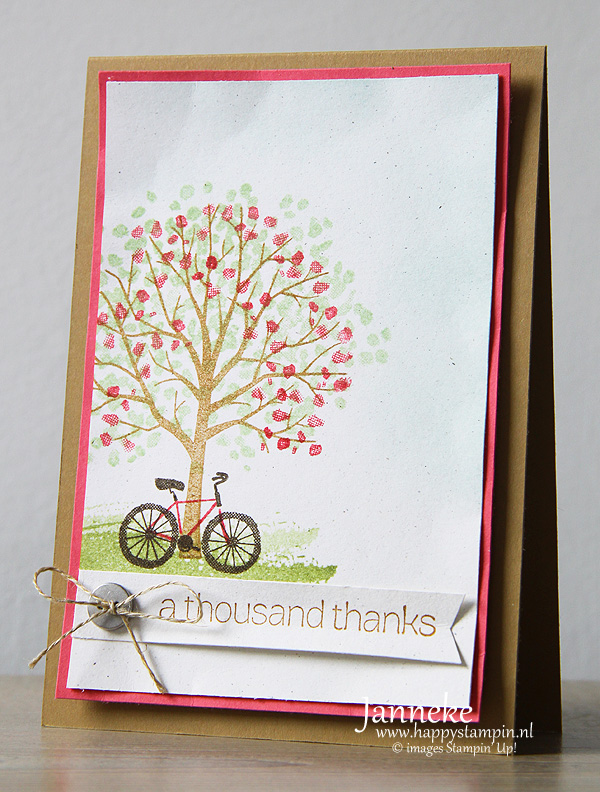 StampinUp_Janneke_April2015_athousend1