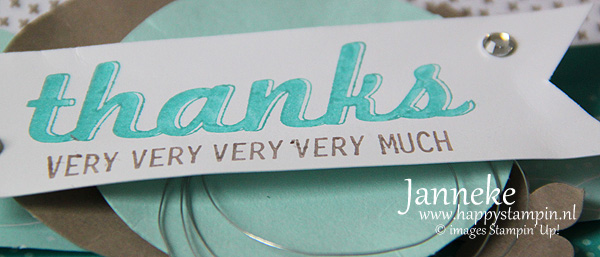 StampinUp_Janneke_Mei2015_Thanks1