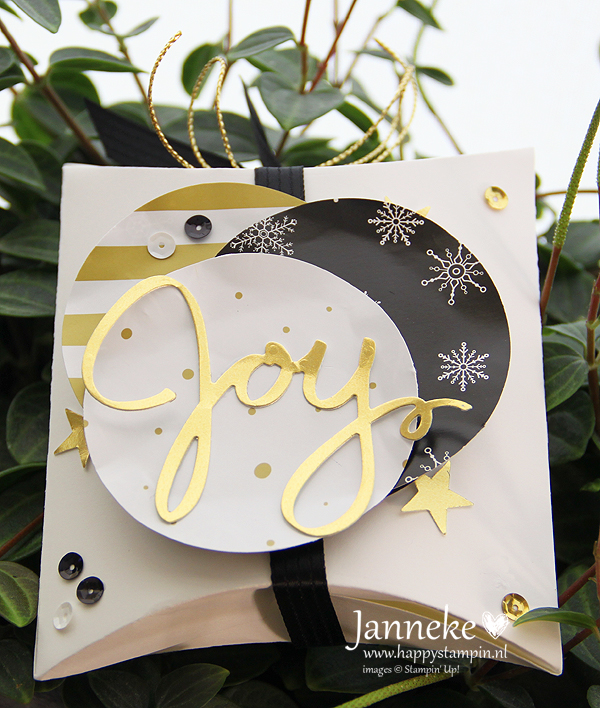 StampinUp_Janneke_September2015_Joy
