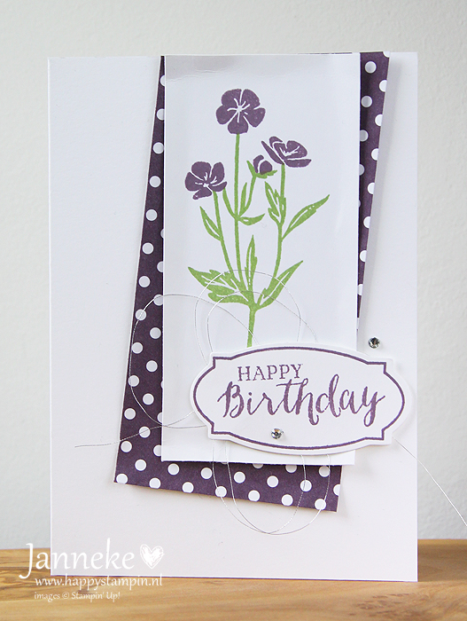 StampinUp_Janneke_April2016_HappyBirthday