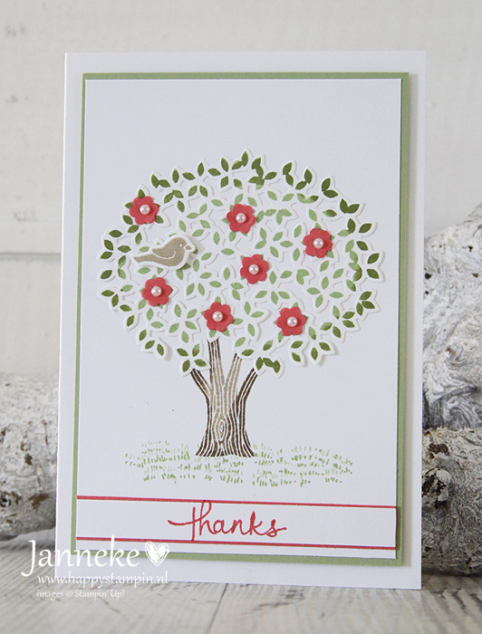 Happy-Stampin-Janneke-de-Jong-Stampin-Up-thanks
