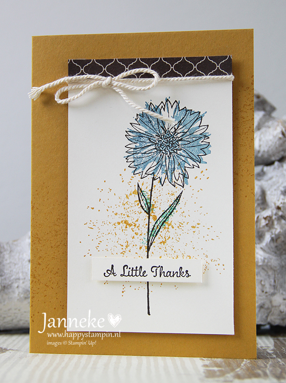 Stampin' Up! – A Little Thanks