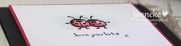 happy-stampin-janneke-de-jong-stampin-up-love-you-lots1
