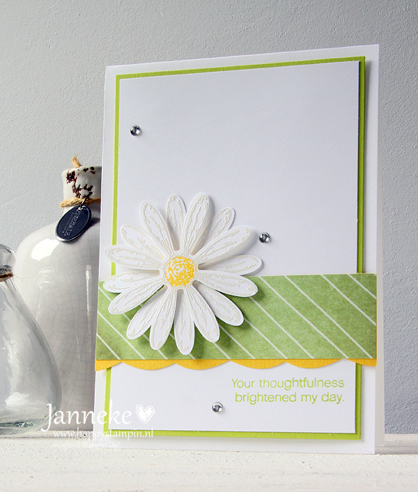 Happy Stampin' Janneke de Jong Stampin' Up! Daisy Delight