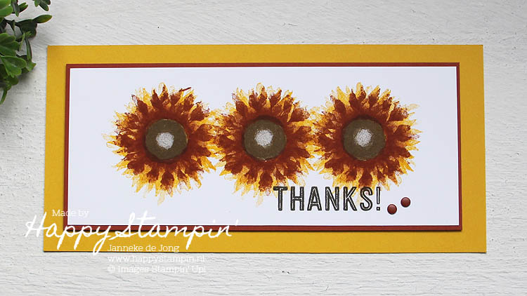 Stampin' Up! - Happy Stampin' - Janneke de Jong - Painted Harvest