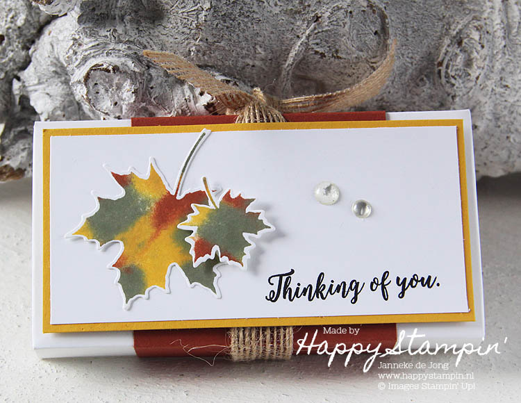 Stampin' Up! - Happy Stampin' - Janneke de Jong - Seasonal Layers Thinlits