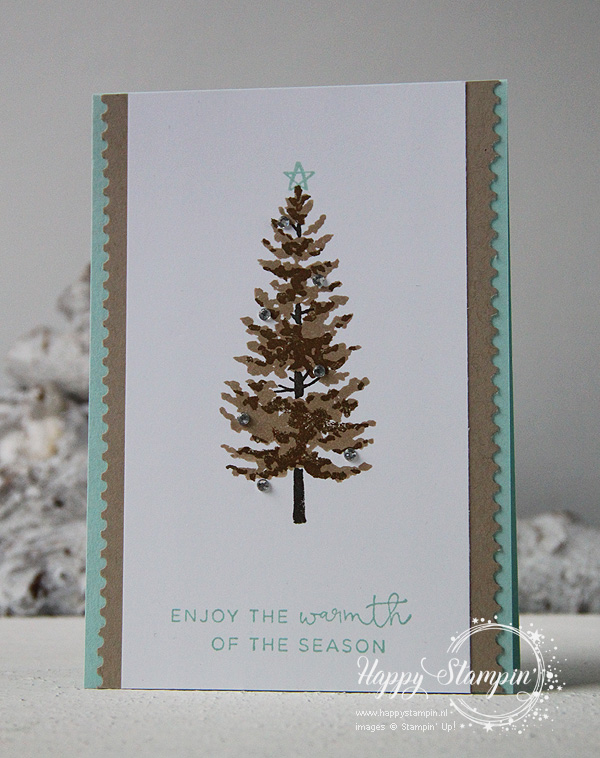 Stampin' Up! - Happy Stampin' - Janneke de Jong - Season like Christmas