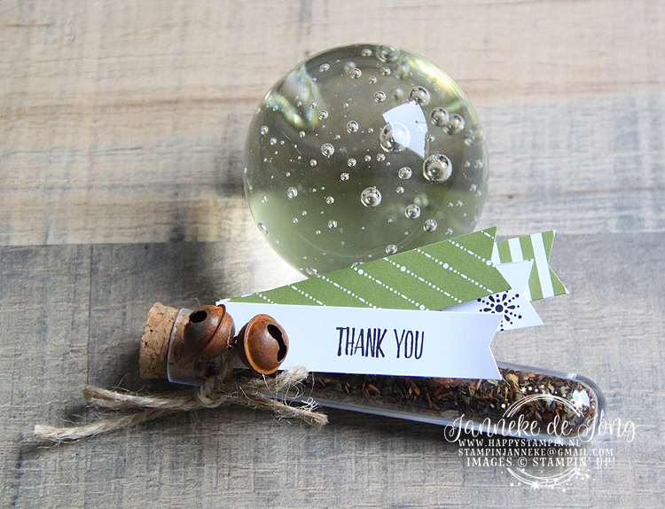Stampin' Up! - Happy Stampin' - Janneke de Jong - Thank you - Treat Tube