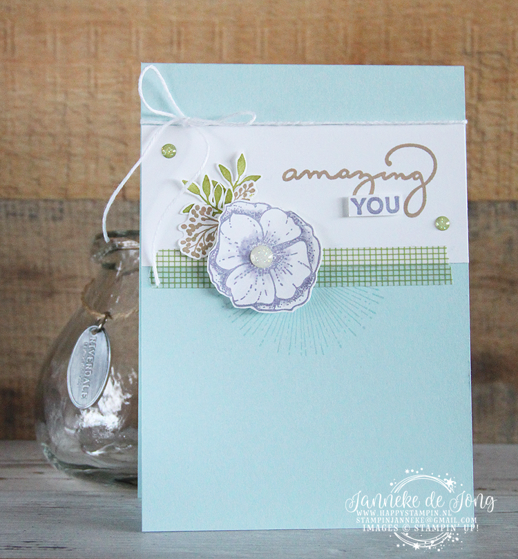Stampin' Up! - Happy Stampin' - Janneke de Jong - Sale A Brations - Amazing You