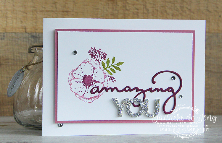 Stampin' Up!- Happy Stampin' - Janneke de Jong - Amazing You - Sale A Brations