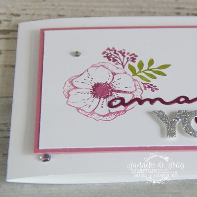 Stampin' Up! – Sale a Brations – Amazing You