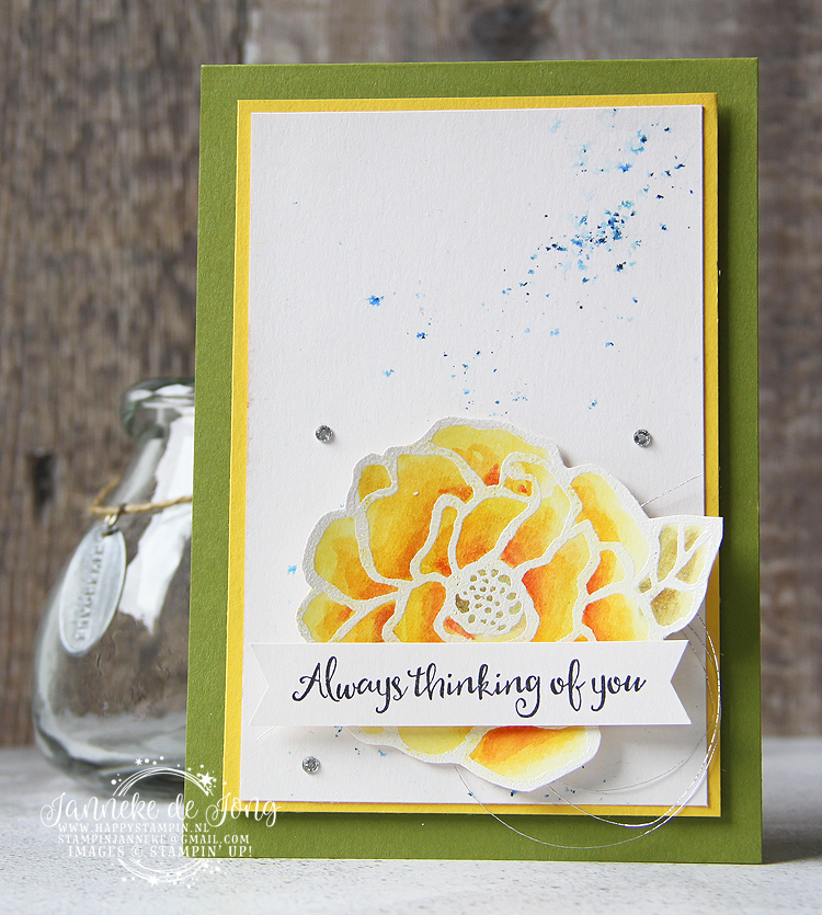 Stampin' Up! - Happy Stampin' - Janneke de Jong - Beautiful Day