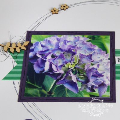 Stampin' Up! – Beautiful Hygrangea – On Stage Display Sampler