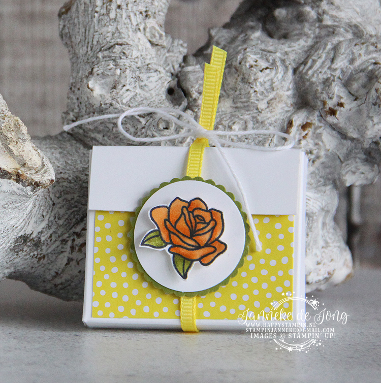 Stampin' Up! - Happy Stampin' - Janneke de Jong - Painted Glass
