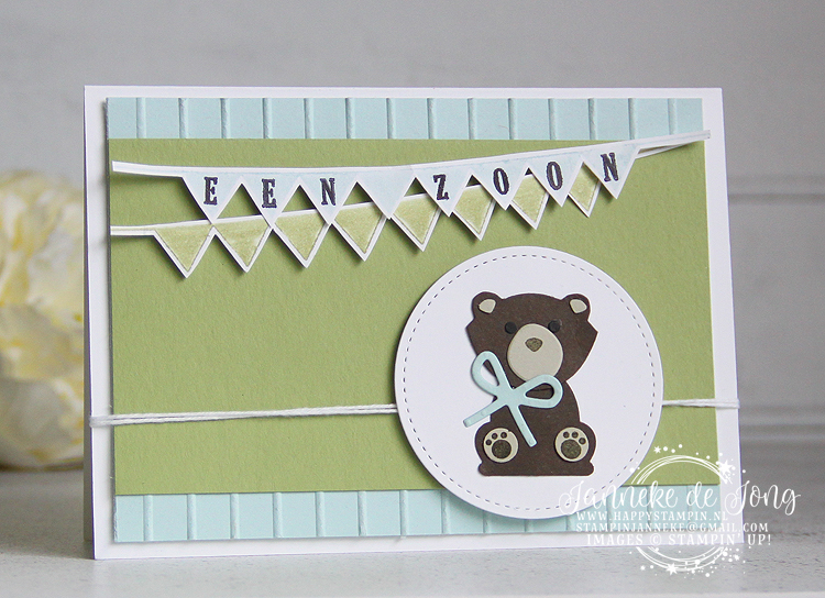 Stampin' Up! - Happy Stampin' - Janneke de Jong - Pick a Pennant