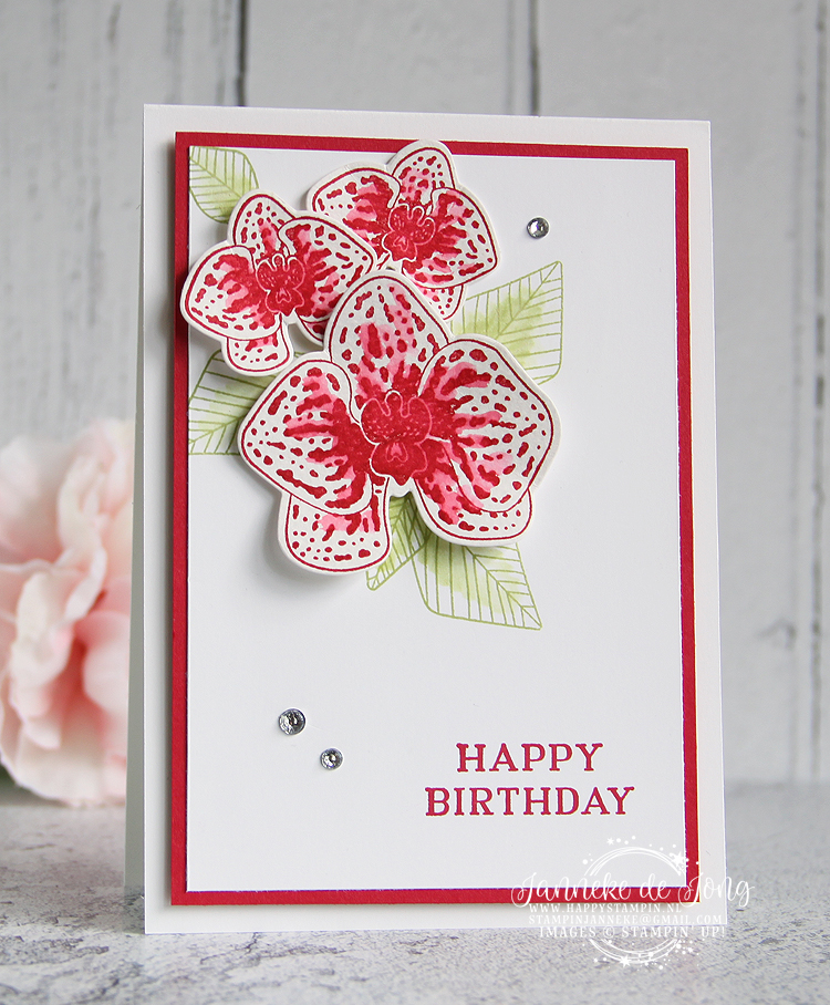 Stampin' Up! - Happy Stampin' Up! - Janneke de Jong - Climbing Orchid