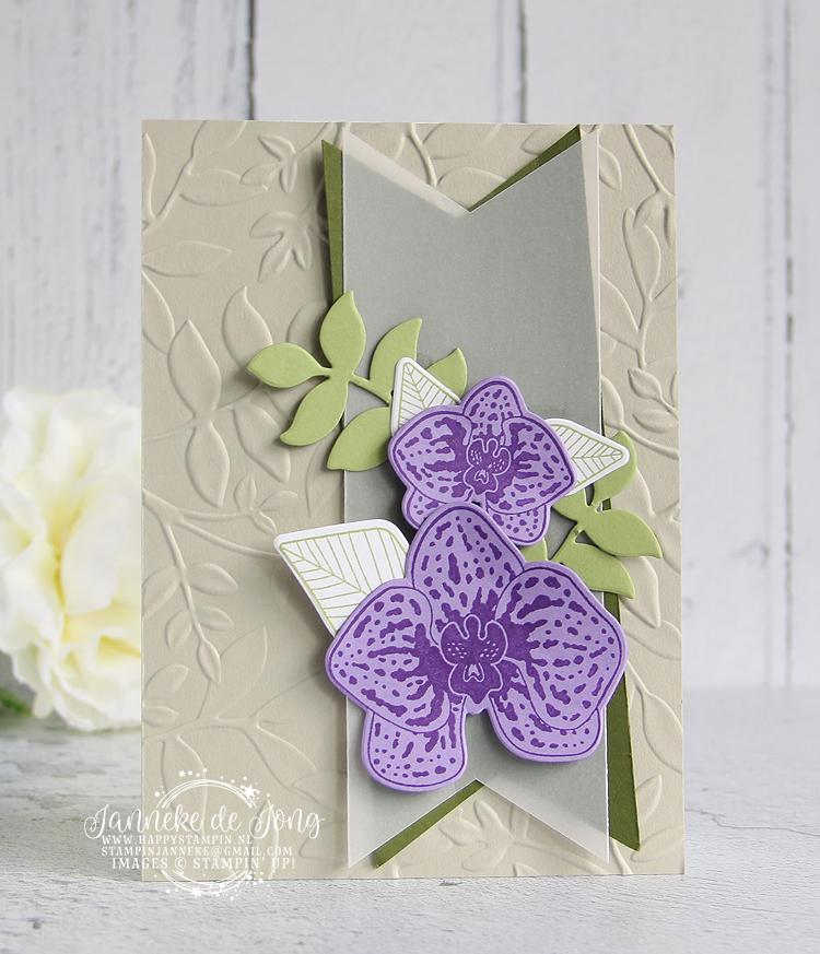 Stampin' Up! - Janneke de Jong - Climbing Orchid - Inspiratie en verkoop van Stampin' Up!