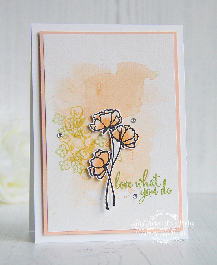 Stampin' Up! - Janneke de Jong - Love what you do - Inspiratie en Verkoop van Stampin' Up!