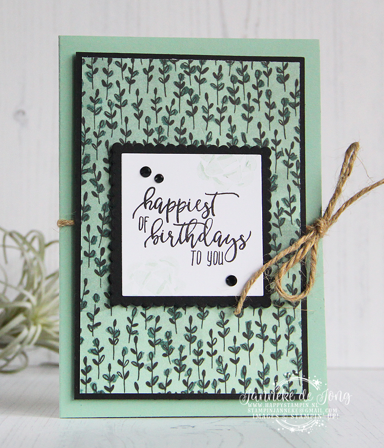 Stampin' Up! - Janneke de Jong - Picture Perfect Birthday - Inspiratie en verkoop van Stampin' Up!