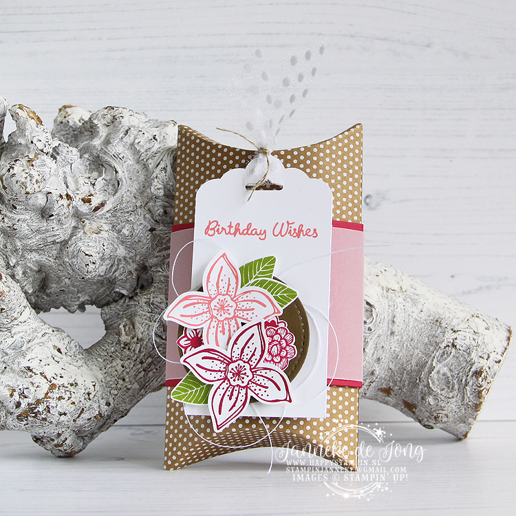 Stampin' Up! - Janneke de Jong - Pop of Petals - Verkoop en Inspiratie van Stampin' Up!