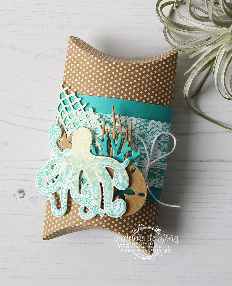 Stampin' Up! - Janneke de Jong - Sea of Textures - Verkoop en Inspiratie van Stampin' Up!