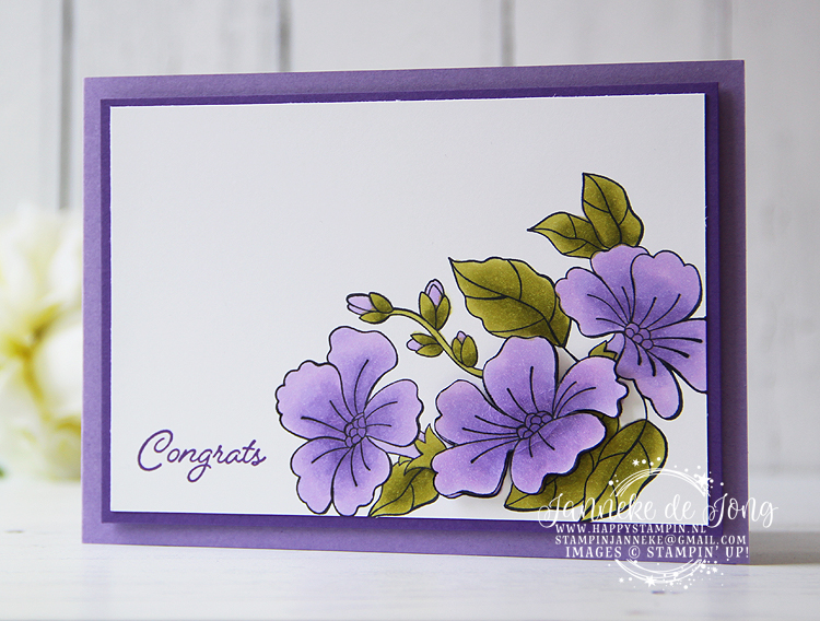 Stampin' Up! - Janneke de Jong - Blended Seasons - Verkoop en Inspiratie van Stampin' Up!