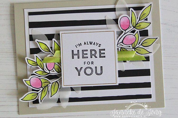 Stampin' Up! - Janneke de Jong - Lots of Happy Card Kit