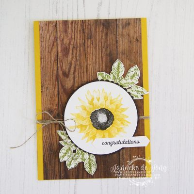Stampin' Up! – Painted Harvest – Global Design Project #147