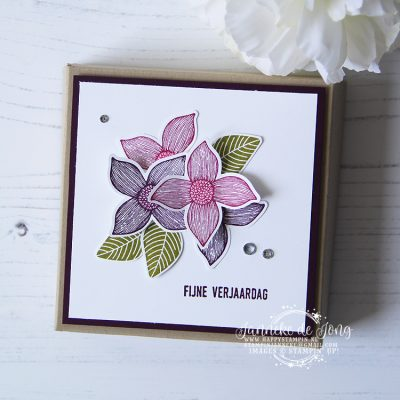 Stampin' Up! – Pop of Petals – Fijne verjaardag