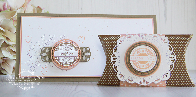 Stampin' Up! - Janneke de Jong - Stitched all Around - Inspiratie en Verkoop van Stampin' Up!