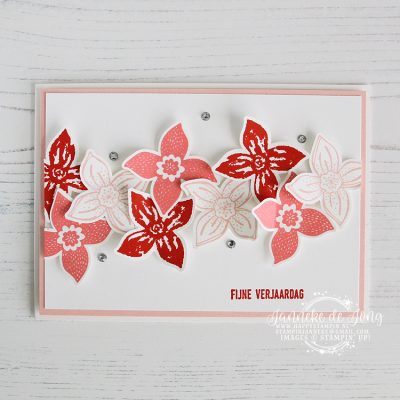 Stampin' Up! – Van Alles Wat – Stamp Fans blog hop