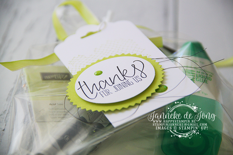 Stampin' Up! - Janneke de Jong - All thing thanks - Inspiratie en verkoop van Stampin' Up!