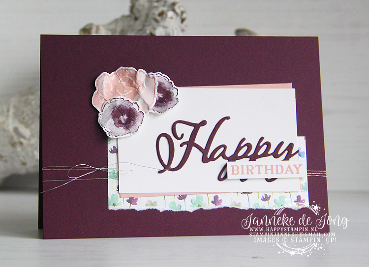 Stampin' Up! - Janneke de Jong - First Frost - Verkoop en Inspiratie Stampin' Up!
