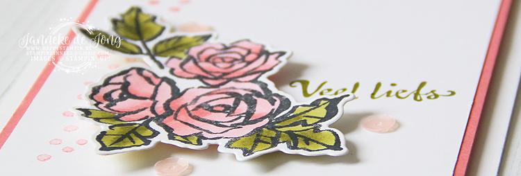 Stampin' Up! - Janneke de Jong - In de bloemetjes zetten - Inspiratie en Verkoop van Stampin' Up!