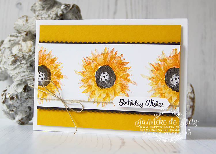 Stampin' Up! - Janneke de Jong - Painted Harvest - Inspiratie en Verkoop van Stampin' Up!