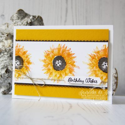 Stampin' Up! – Painted Harvest – Birthday Wishes