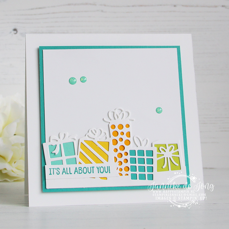 Stampin' Up! - Janneke de Jong - Birthday Cheer - Inspiratie en Verkoop van Stampin' Up!