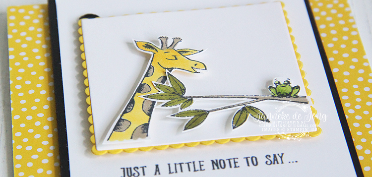 Stampin' Up! - Janneke de Jong - Animal Outing - Inspiratie en Verkoop van Stampin' Up!