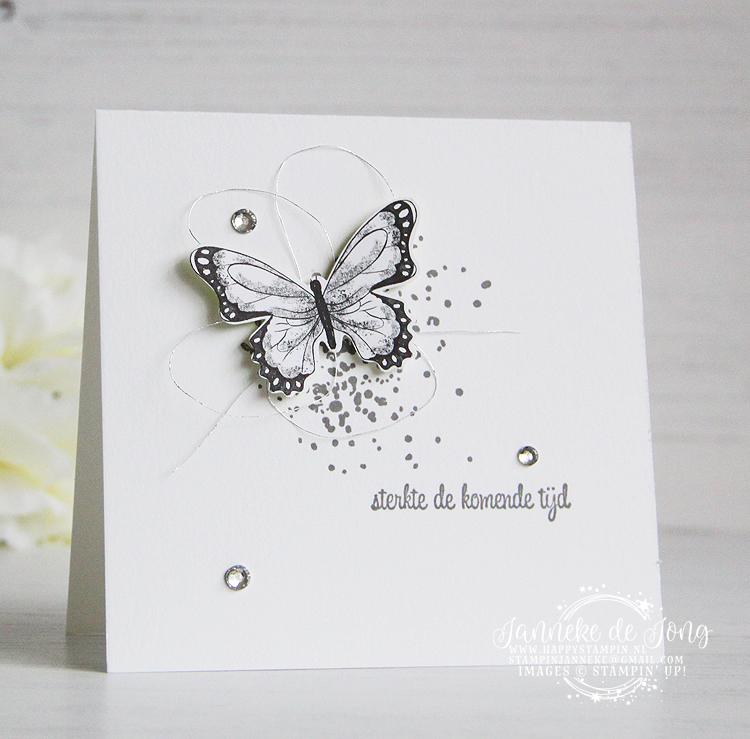 Stampin' Up! - Janneke de Jong - Botanical Butterfly - Inspiratie en Verkoop van Stampin' Up!