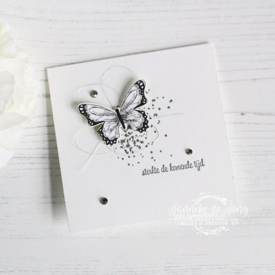 Stampin' Up! – Botanical Butterfly – Sterkte