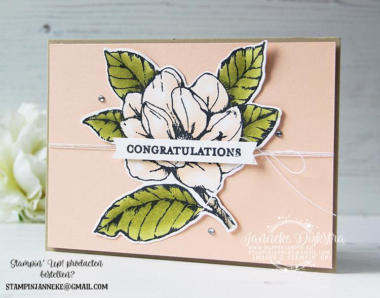 Stampin' Up! - Happy Stampin' - Janneke Dijkstra de Jong - Magnolia Blooms - Inspiratie en Verkoop van Stampin' Up!