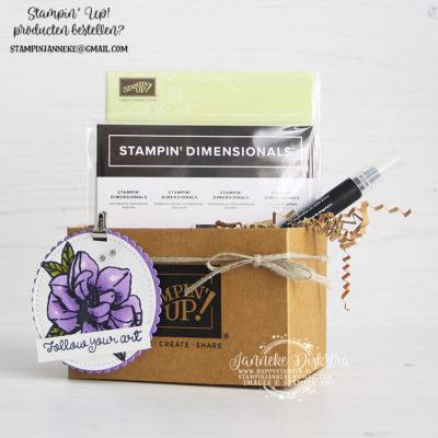 Stampin' Up! – Mini Shipping Box – Global Design Project #199