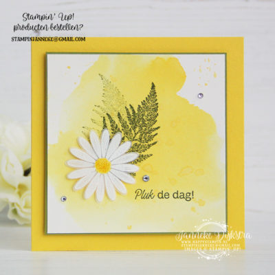 Stampin' Up! – Pluk de dag – Happy Stars bloghop