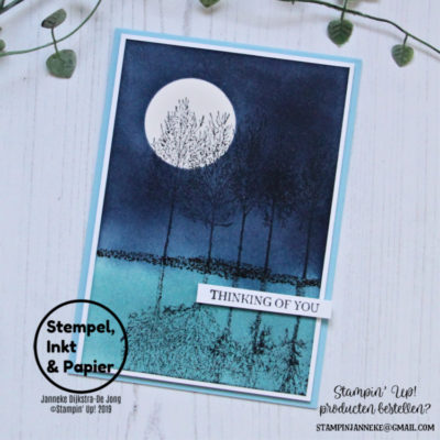 Stampin' Up! – Winter Woods – Stempels, Inkt & Papier