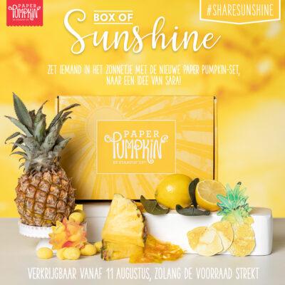 Paper Pumkin – Box of Sunshine